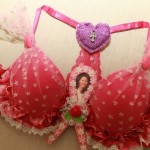 Cancer Awareness Project - Bizarre Bra's